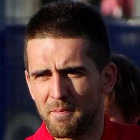Vedad Ibisevic facts
