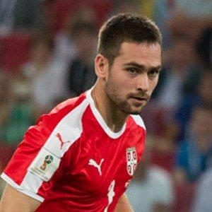 facts on Andrija Zivkovic